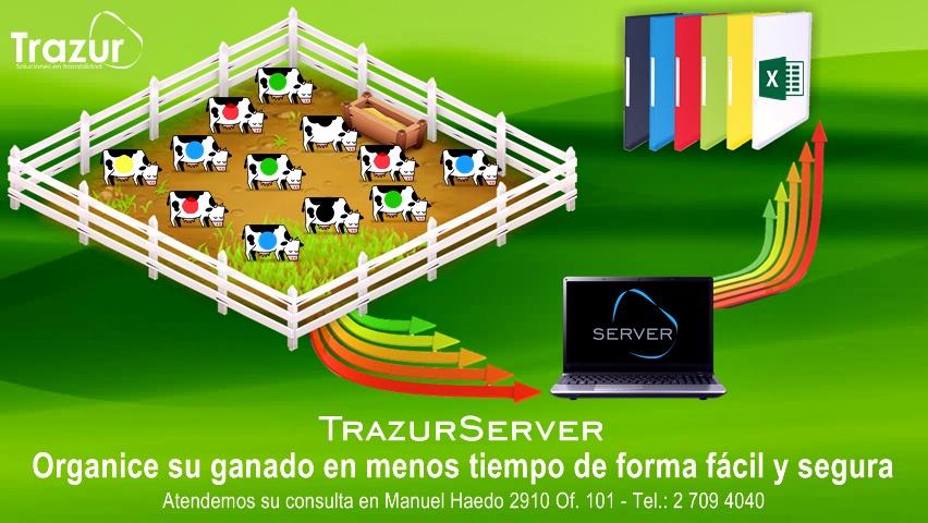 SERVER FLYER3