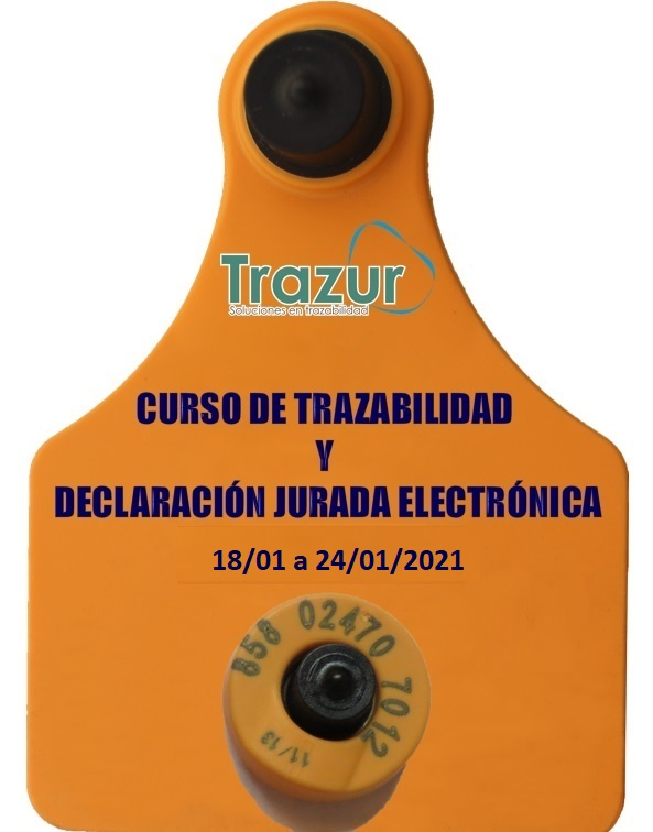 imagen-para-trazur-3.jpg